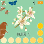 Flight of Pollen LEVEL A